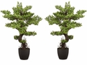 "36"" Boxwood Artificial Bonsai Tree - Set of 2"
