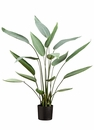 "36"" Water Canna Artificial Plant With 16 Leaves in Pot - Set of 2"