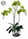 "37"" Artificial Phalaenopsis Orchid Plant Arrangement in Glass Vase"