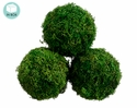 "4.3"" Diameter Preserved Small Sphagnum Moss Ball - (6 boxes each contains 3 moss balls)"