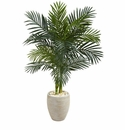 4.5� Golden Cane Palm Artificial Tree in Oval Planter -