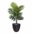 4.5' Kentia Palm Artificial Tree in Black Wash Planter