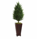 4� Cypress Cone Artificial Tree in Decorative Planter  -