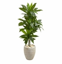 4� Dracaena Artificial Plant in Sand Colored Planter (Real Touch) -