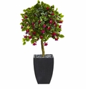 4� Fuschia Artificial Tree in Black Wash Planter -