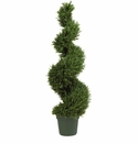 4' Rosemary Spiral Silk Tree (Indoor/Outdoor)