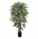 4' Similax Silk Tree