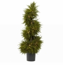 43� Cedar Spiral Topiary w/Lights
