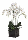 "45"" Artificial Phalaenopsis Orchid Plant Arrangement in Clay Pot"