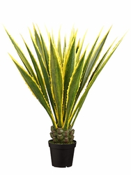 """48"""" Artificial Agave Americana in Pot - Set of 2"""