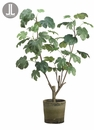 "48"" Artificial Fig Plant Tree in Clay Container"
