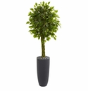 5.5� Braided Ficus Artificial Tree in Gray Cylinder Planter UV Resistant (Indoor/Outdoor)  -