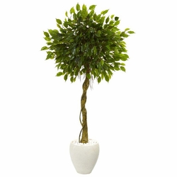 5.5' Ficus Artificial Tree in White Oval Planter UV Resistant (Indoor/Outdoor) -