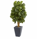 5.5� Fiddle Leaf Artificial Tree in Slate Planter  -