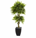 5.5� Mango Artificial Tree in Black Wash Planter UV Resistant (Indoor/Outdoor) -
