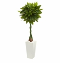 5.5� Money Artificial Tree in White Tower Planter (Real Touch) -