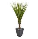 5.5� Spiky Agave Artificial Plant in Slate Planter  -