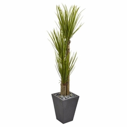 5.5' Triple Stalk Yucca Artificial Plant in Slate Planter