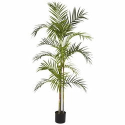 5' Areca Palm Silk Tree