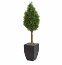 5� Boxwood Cone Artificial Tree in Black Wash Planter UV Resistant (Indoor/Outdoor) -