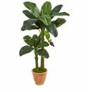 5� Double Stalk Banana Artificial Tree in Terracotta Planter -