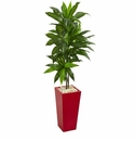 5� Dracaena Artificial Plant in Red Planter (Real Touch) -