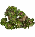 5� Echeveria Succulent Plant Artificial Cactus (Set of 12) - Green/Burgundy