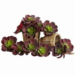 "5"" Echeveria Succulent Plant Artificial Cactus (Set of 12) in Burgundy"