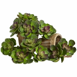 "5"" Echeveria Succulent Plant Artificial Cactus (Set of 12) - Green/Burgundy"