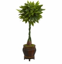 5� Money Artificial Tree in Decorative Planter (Real Touch) -