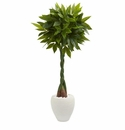 5� Money Artificial Tree in White Oval Planter (Real Touch)