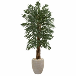5' Parlor Artificial Palm Tree in Decorative  Planter -