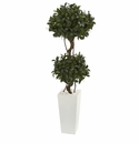 5� Sweet Bay Artificial Double Topiary in White Tower Planter