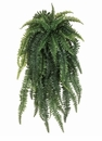52 inch length Weeping Boston Silk Fern Bush with 55 Fronds