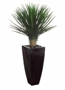 "53"" Artificial Whipple Yucca Plant Arrangement in Black Decorative Container"