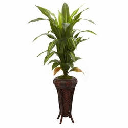 "57"" Dracaena with Decorative Stand Silk Plant (Real Touch)"