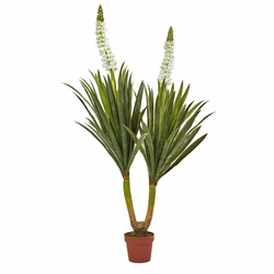 "57"" Flowering Yucca Plant"