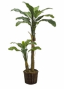 6.5' SILK BANANA TREE X 2 WITH FRUIT IN PLANTER