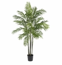 6' Areca Palm Silk Tree