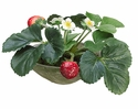 """6"""" Artificial Strawberry Arrangement in Clay Bowl - Set of 4"""