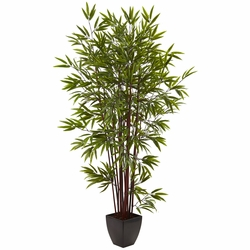 6' Bamboo Silk Tree w/Planter