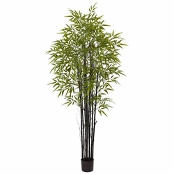 6' Black Bamboo Tree UV Resistant - Indoor/Outdoor