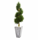 6� Cypress Spiral Artificial Tree in Cement Planter UV Resistant (Indoor/Outdoor) -