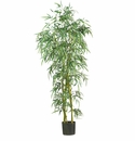 6'  Fancy Style Slim Bamboo Silk Tree