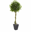 6� Ficus Artificial Tree in Slate Planter UV Resistant (Indoor/Outdoor) -