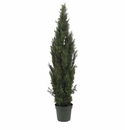 6' Mini Cedar Pine Tree (Indoor/Outdoor)