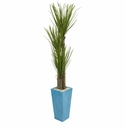6� Triple Stalk Yucca Artificial Plant in Turquoise Planter -