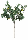 "63"" Artificial Lemon Branch Stem - Set of 2"
