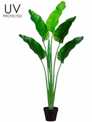 "64"" UV Protected Artificial Bird of Paradise Plant - Set of 2"