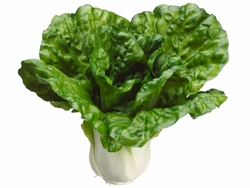 """7"""" Artificial Cabbage Head - Set of 6"""